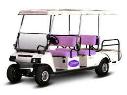 Port Charlotte Just Built the Most Magical Golf Cart Florida Has Ever Seen!